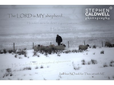 The Good Shepherd - Psalm 23